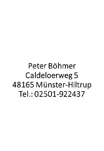 Sanitär, Heizung und Gasanalgen - Peter Böhmer